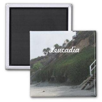 Leucadia 2 Inch Square Magnet