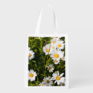 Leucanthemum Vulgare Bolsas Para La Compra