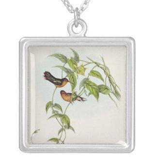 Leucippus Fallax Silver Plated Necklace