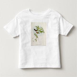 Leucippus Fallax Toddler T-shirt