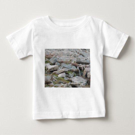 Leucura atado blanco del Lagopus de la perdiz Playera De Bebé