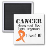 Leukemia Cancer Does Not Live Here Anymore Magnet