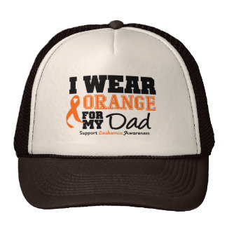 Leukemia I Wear Orange For Dad Mesh Hat