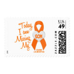 Leukemia Missing My Son 1 Postage Stamp