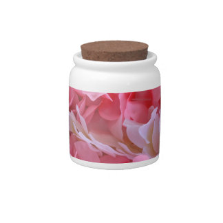 leus blancos rosados jarras para caramelos