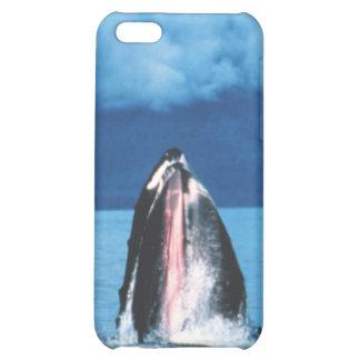 Levantamiento de la ballena jorobada