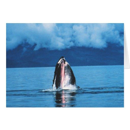 Levantamiento de la ballena jorobada tarjeta de felicitación