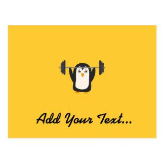Levantamiento de pesas del pingüino tarjetas postales