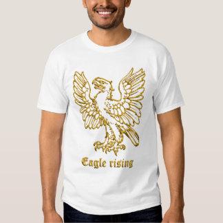 Levantamiento medieval de Eagle de la heráldica Poleras