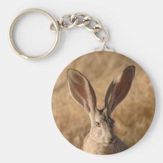 Levante el conejo con llavero grande de la foto de