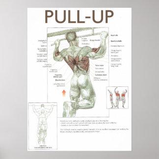 Levante el poster del gimnasio de la instrucción