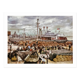 Levee at Canal Street New Orleans 1900 Postcard