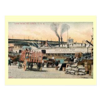 Levee Scene, St. Louis, Missouri Vintage Postcard