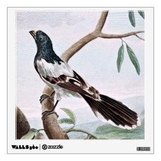 Leverian Shrike Bird Vintage Painting Room Decals