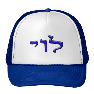 Levi, Leivi, Laivi - efecto 3d Gorra