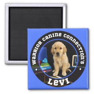 Levi magnet