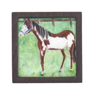 Levi Paint Horse Premium Jewelry Box