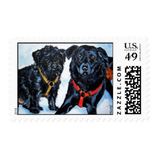 Levinrad's Lacey & Jan Postage