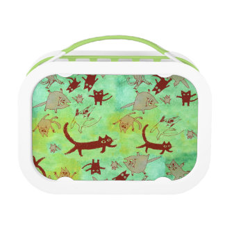 levitating kitties lunch box