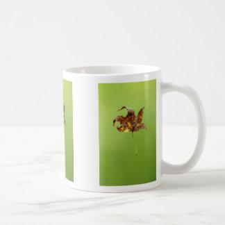 Levitation Classic White Coffee Mug