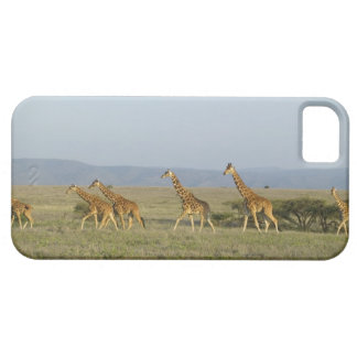 Lewa Wildlife Conservancy, Kenya iPhone SE/5/5s Case