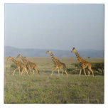Lewa Wildlife Conservancy, Kenya Large Square Tile