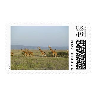 Lewa Wildlife Conservancy, Kenya Postage Stamp