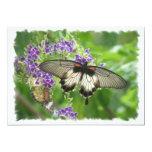 Leyenda de la invitación de las mariposas