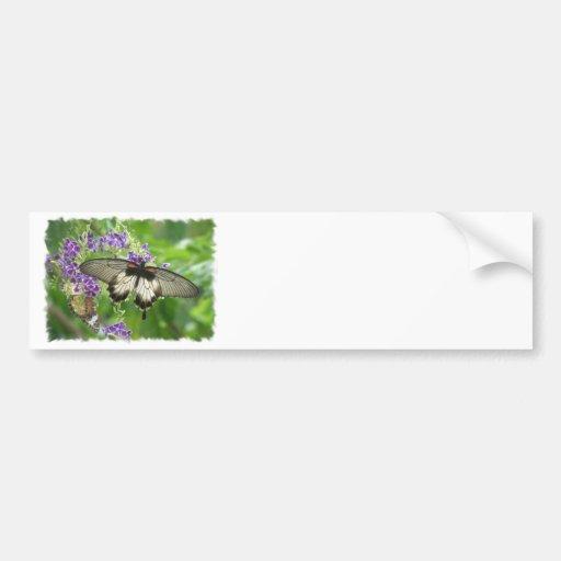 Leyenda de la pegatina para el parachoques de las  pegatina de parachoque