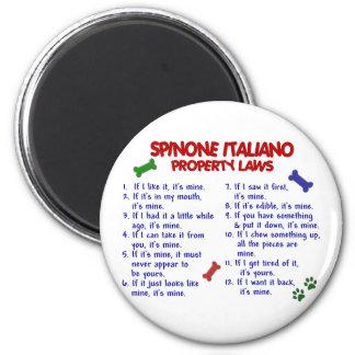 Leyes 2 de la propiedad de SPINONE ITALIANO Imán Para Frigorifico