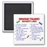 Leyes 2 de la propiedad de SPINONE ITALIANO Imán Cuadrado