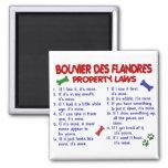 Leyes 2 de la propiedad del DES FLANDRES de BOUVIE Imán Cuadrado
