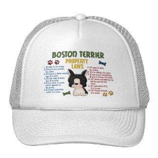 Leyes 4 de la propiedad de Boston Terrier Gorros