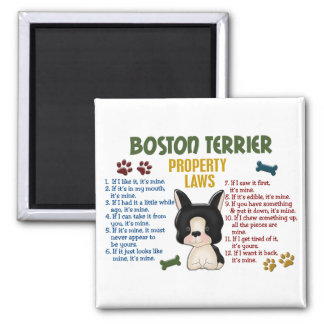 Leyes 4 de la propiedad de Boston Terrier Imán De Frigorífico