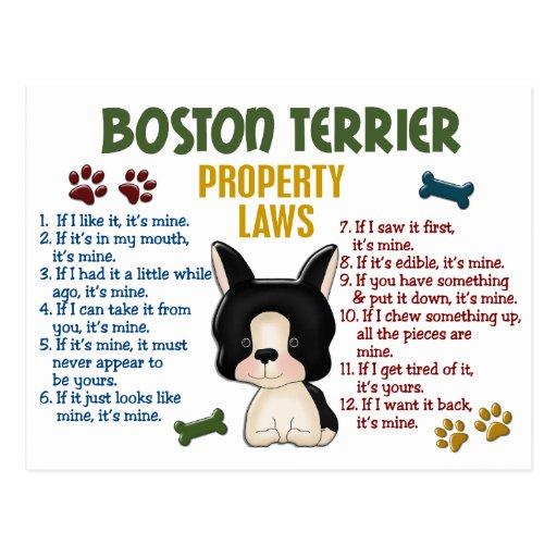 Leyes 4 de la propiedad de Boston Terrier Tarjetas Postales