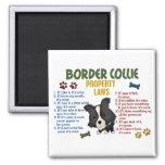 Leyes 4 de la propiedad del border collie iman de nevera
