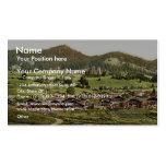 Leysin, general view of village and hotels, Nand, Business Card