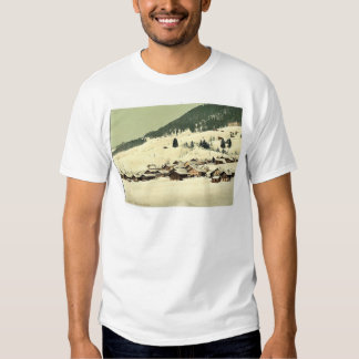 Leysin, the village and sanatorium in winter, Nand T-shirt