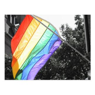 LGBT Flag Photo Postcard