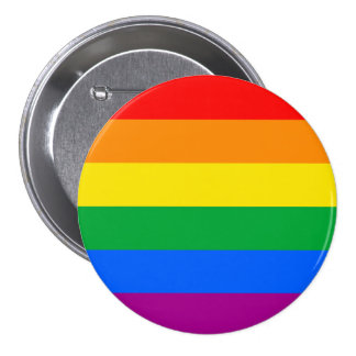 LGBT Pride Flag / Rainbow Flag Pinback Button