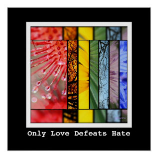 Lgbt Pride Symbol Love Defeats Hate Nature Rainbow Poster at Zazzle