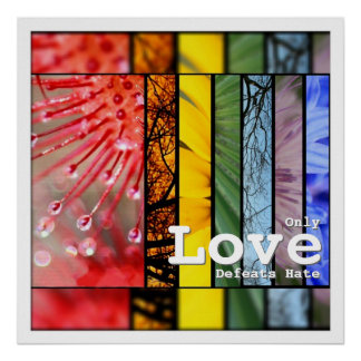 LGBT Pride Symbol Love Defeats Hate Nature Rainbow Poster