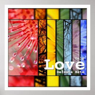 LGBT Pride Symbol Love Defeats Hate Nature Rainbow Poster