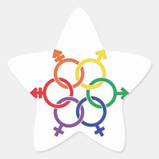 LGBTQ United Star Sticker