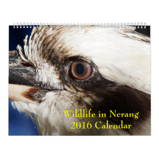LGE Wildlife in Nerang 2016 Calendar
