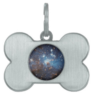 LH 95 in the Large Magellanic Cloud Pet ID Tag