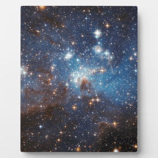 LH 95 in the Large Magellanic Cloud Plaques