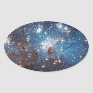 LH 95 in the Large Magellanic Cloud Oval Sticker