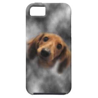 LH roja del dachshund iPhone 5 Protectores