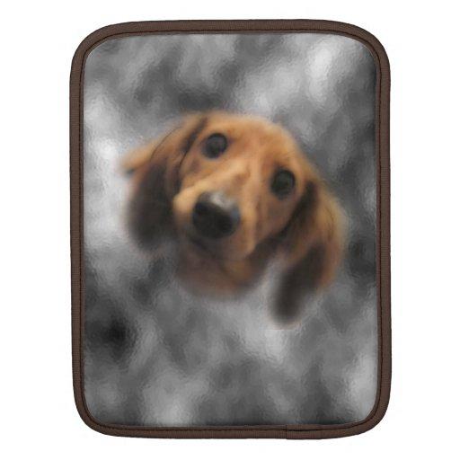 LH roja del dachshund Fundas Para iPads